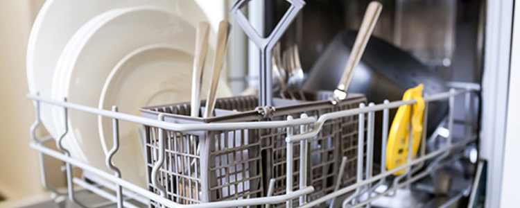 Dishwasher and Restrain from Plumbing Service